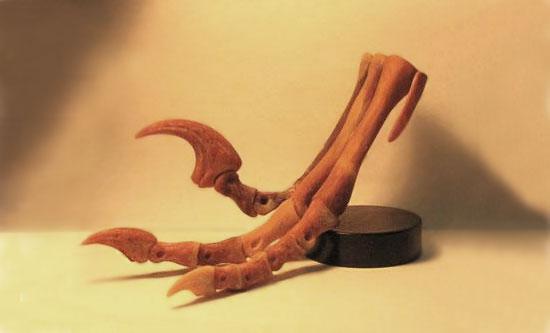 BrantWorks Dinosaur Skeletons