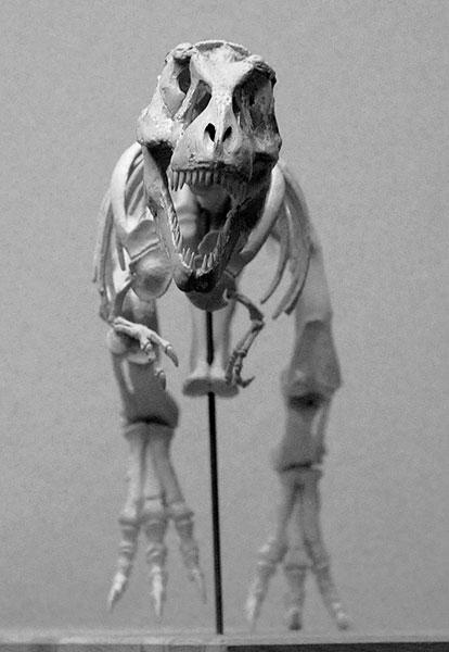 Brantworks Kaiyodo Tyrannosaurus Kit