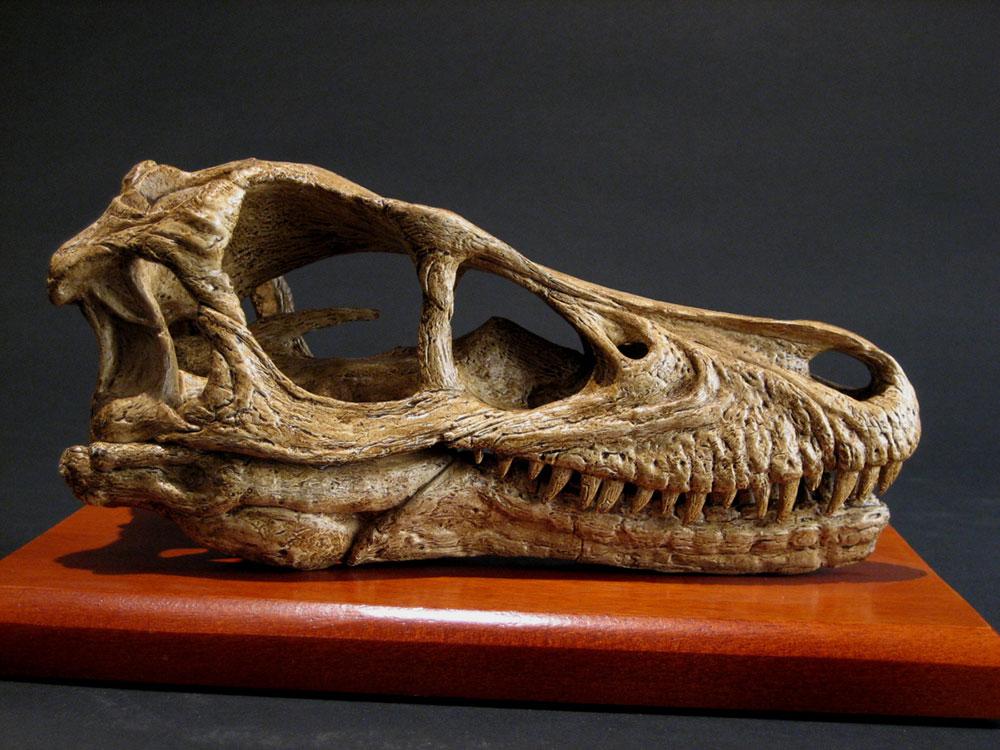 BrantWorks: Velociraptor Skull